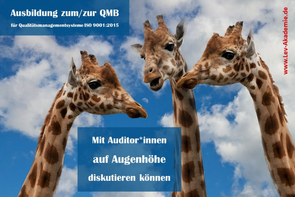 QMB-Ausbildung ISO 9001 - Auf Augenhöhe