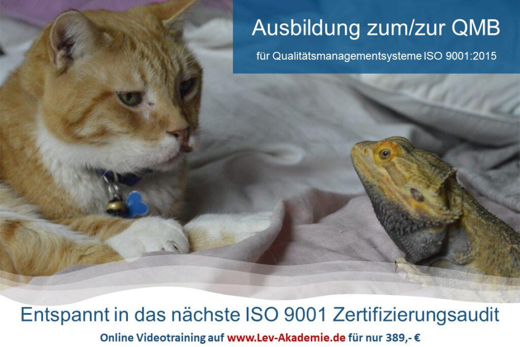 QMB-Ausbildung ISO 9001 - Entspannt ins Audit